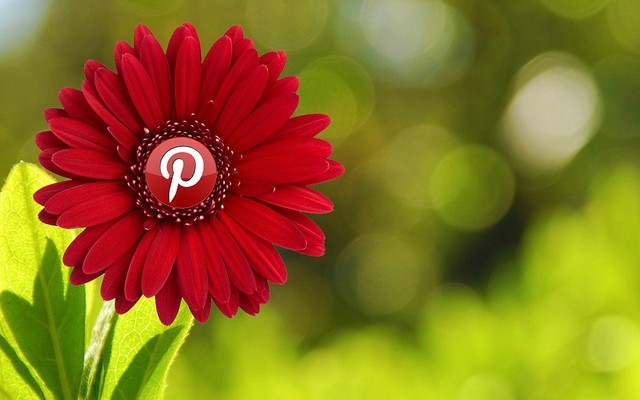 Pinterest Ads Manager
